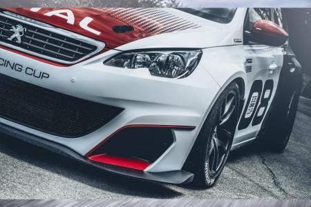 Peugeot 308 для гонок
